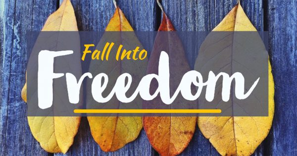 Fall Into Freedom